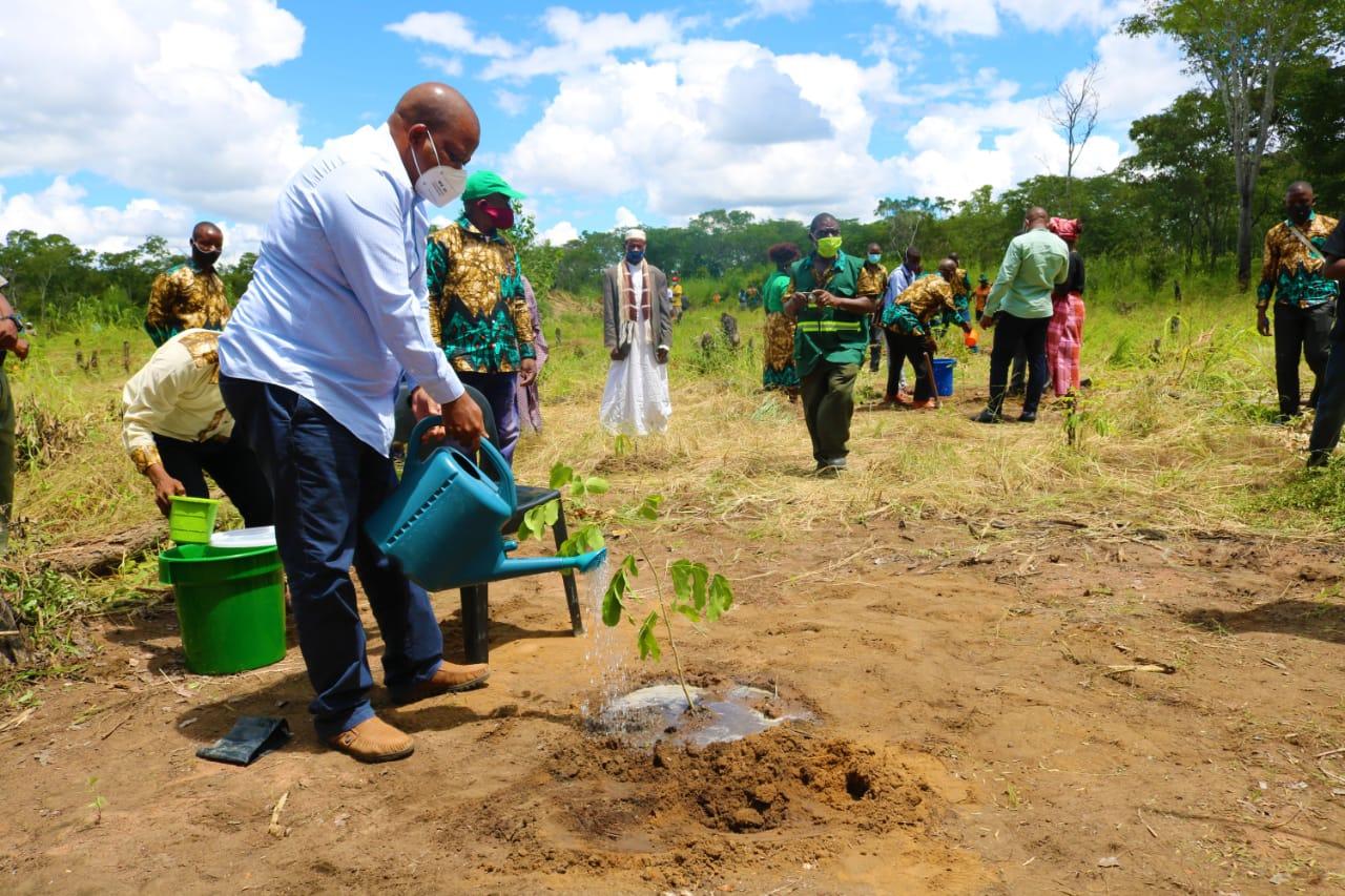Reserva de Mecubúri vai beneficiar de reflorestamento