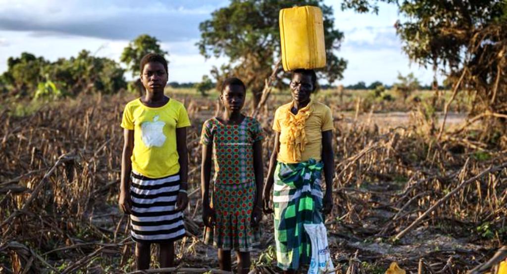 Empresários de Nampula sensibilizados com a fome desdobram-se na mobilização de apoios